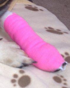 close-bandage